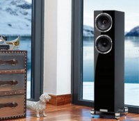 Fyne Audio F501SP álló hangfal